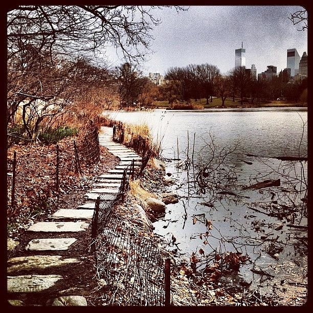 Water Photograph - Along The Water. #centralpark #nyc by Luke Kingma