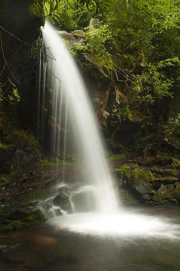 Grotto Falls Photograph - Alongside Grotto Falls by Andrew Soundarajan