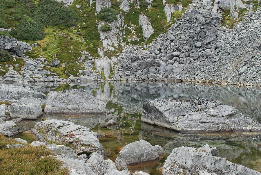 Alpine Water Edge by Jan Piet