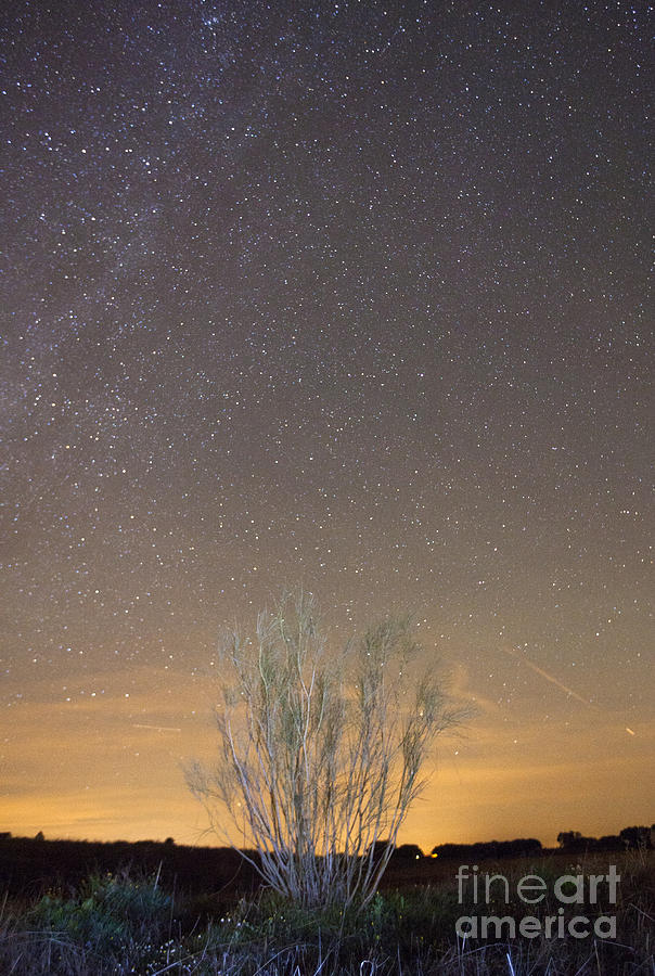 Dark Photograph - Alqueva Dark Sky Reserve by Andre Goncalves