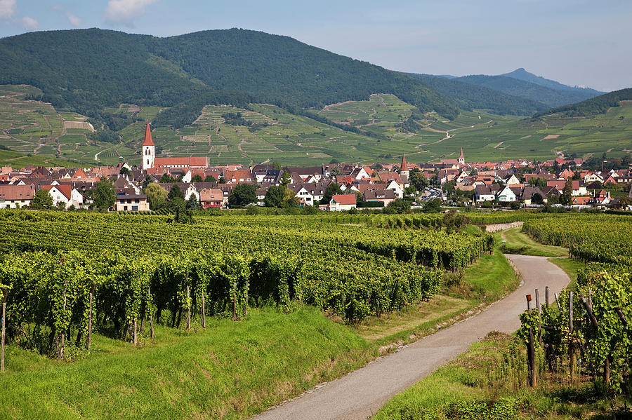 Horizontal Photograph - Alsace, France. by Buena Vista Images