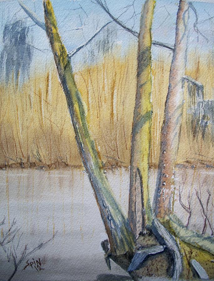 Spin Painting - Altamaha River Three Trees by Spencer  Joyner