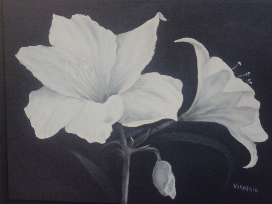 Flower Painting - Amaryllis by Virginia Butler