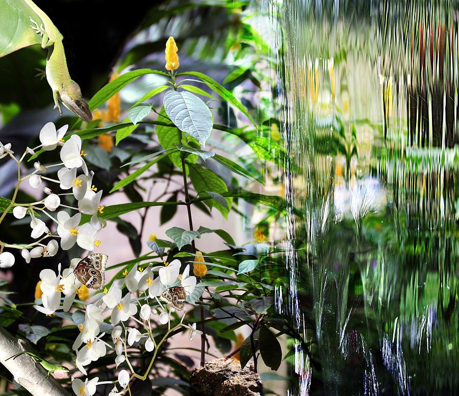 Botanical Photograph - Ambiance by Elizabeth Hart