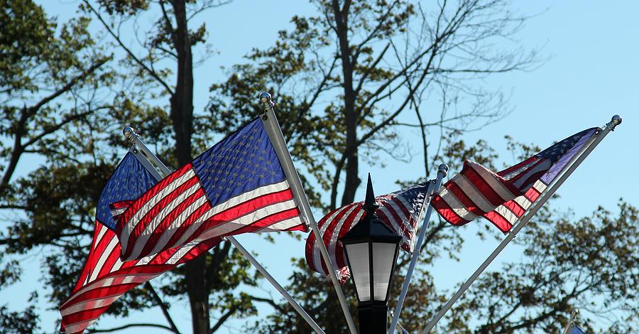 America Photograph - American Beauty by James Hammen