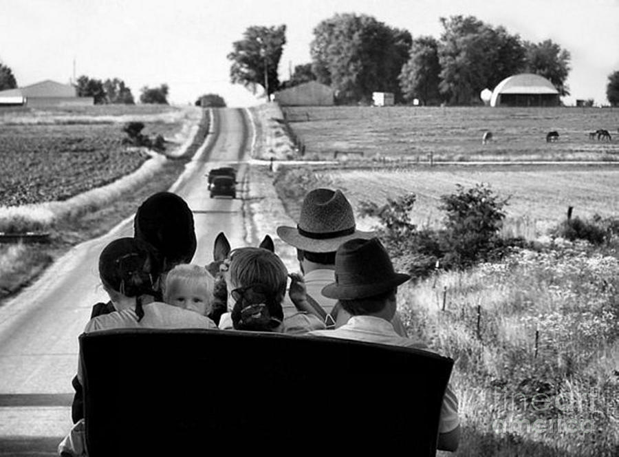 Amish Photograph - Amish Family Outing by Julie Dant