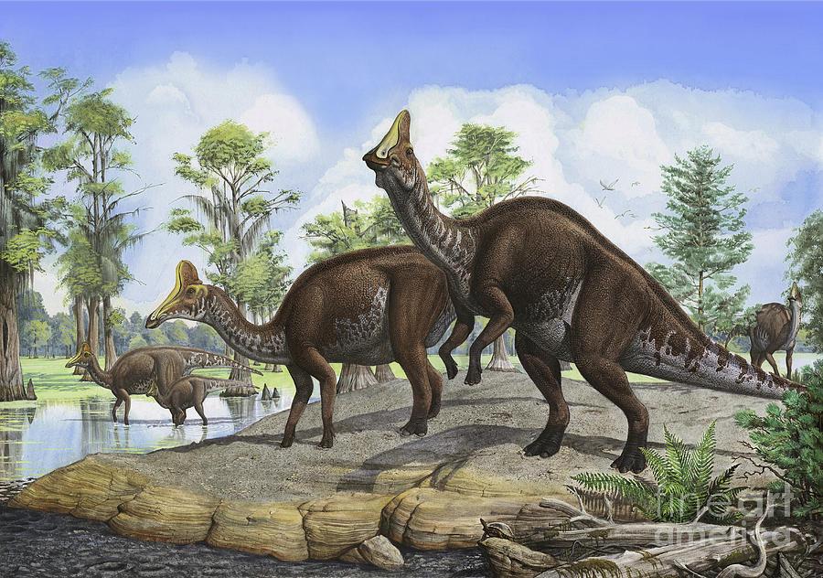 Amurosaurus Riabinini Digital Art - Amurosaurus Riabinini Dinosaurs Grazing by Sergey Krasovskiy