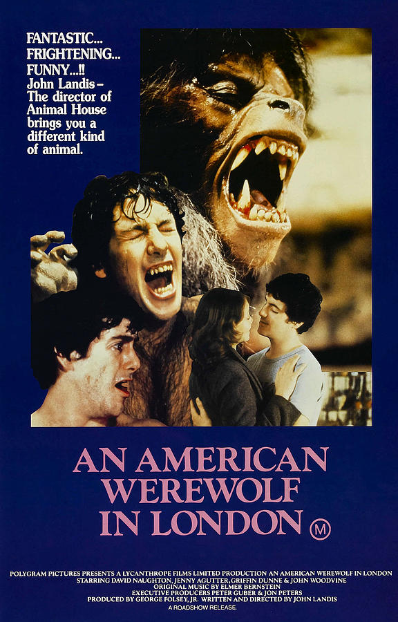 1980s Movies Photograph - An American Werewolf In London, David by Everett