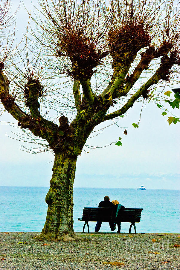 Love Photograph - An Autumn Affair by Syed Aqueel
