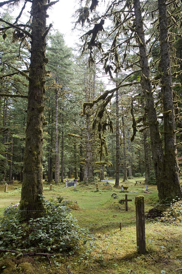 British Columbia Photograph - An Old Cemetary In A Forest by Taylor S. Kennedy