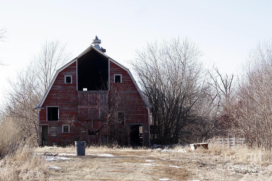 Barns Photograph - An Old Red Barn by Yumi Johnson