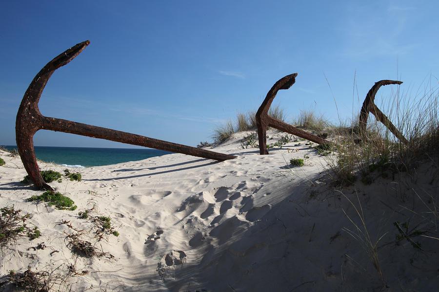 Photographer Photograph - Anchor Beach 13 by Jez C Self