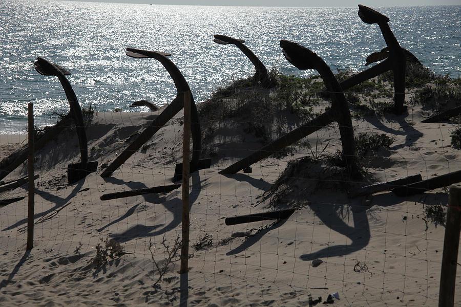 Photographer Photograph - Anchor Beach 15 by Jez C Self