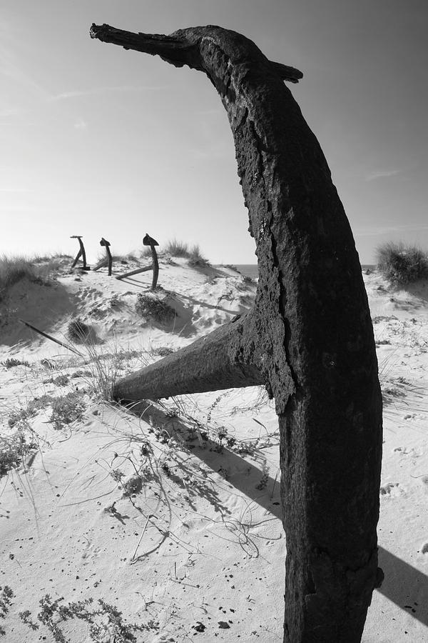 Photographer Photograph - Anchor Beach 17 by Jez C Self