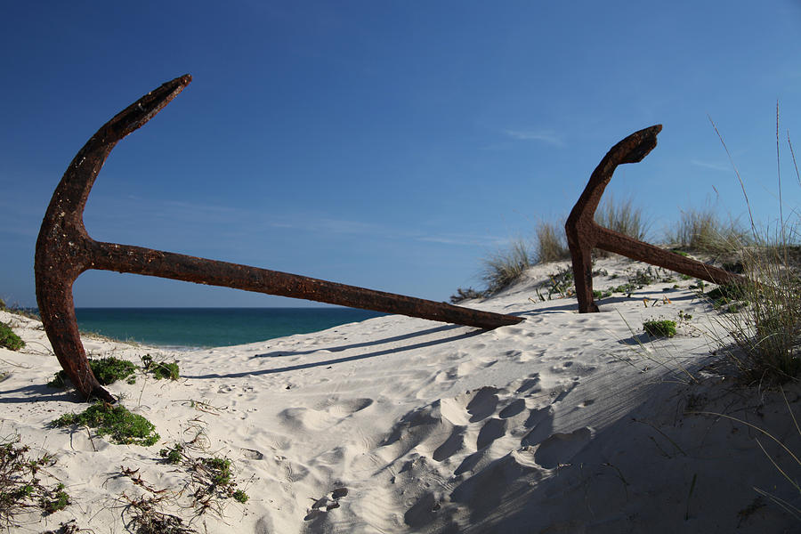 Photographer Photograph - Anchor Beach 8 by Jez C Self