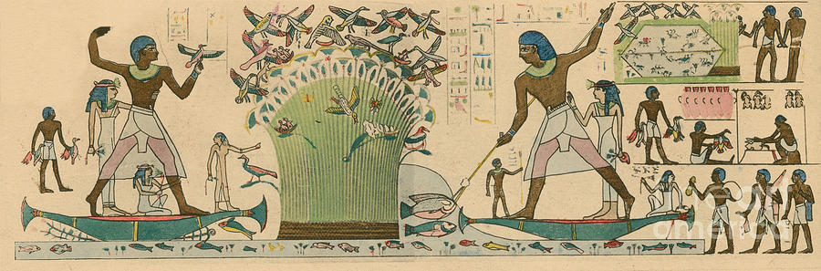 Ancient Egypt Bird Hunting Photograph By Science Source
