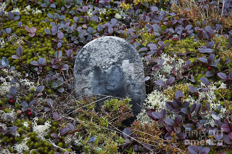 Maine Photograph - Ancient Gravestone. by John Greim