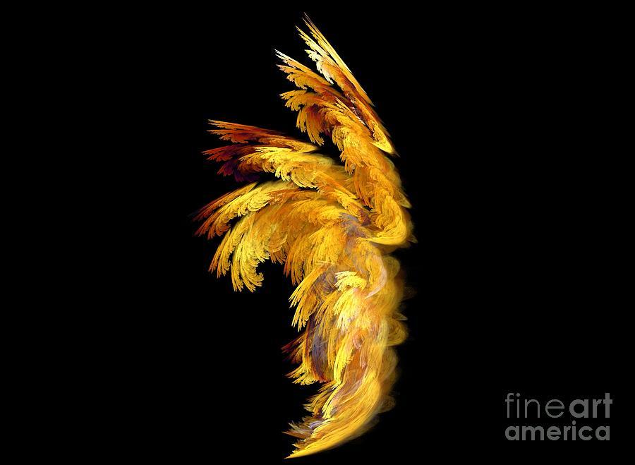 Apophysis Digital Art - Angel Wings 1 by Kim Sy Ok