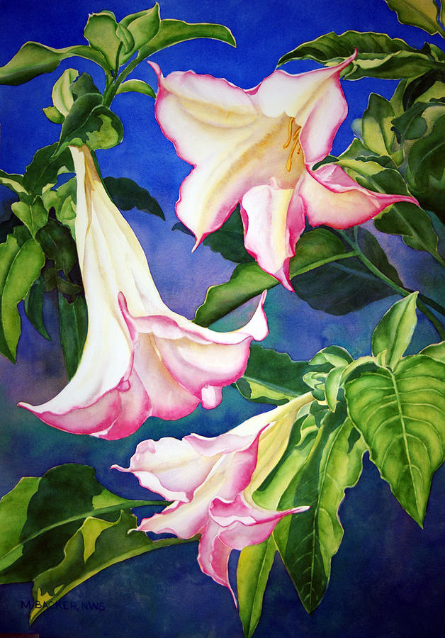 Flowers Painting - Anges Trumpet by Mary Backer