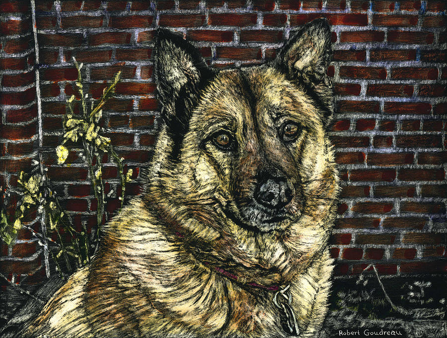 German Shepherd Painting - Angie the Dog by Robert Goudreau
