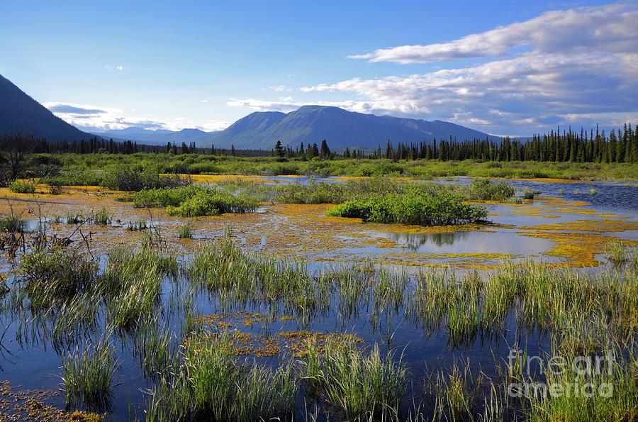 Yukon Photograph - Annie Lake In Yukon by Charline Xia
