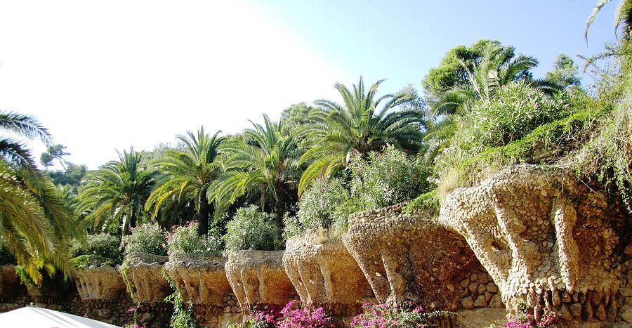 Parc Guell Photograph - Antoni Gaudi Park Guell Plants Barcelona Spain by John Shiron