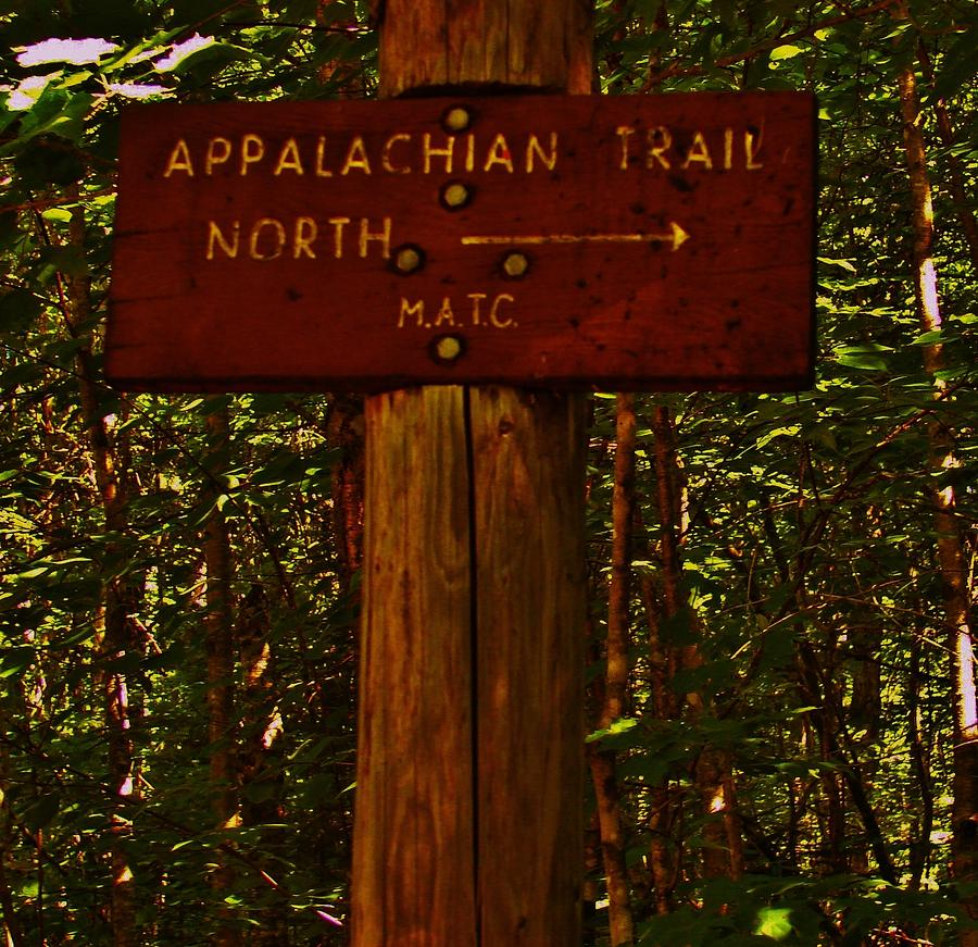 Hiking Photograph - Appalachian Trail by Sarah Buechler