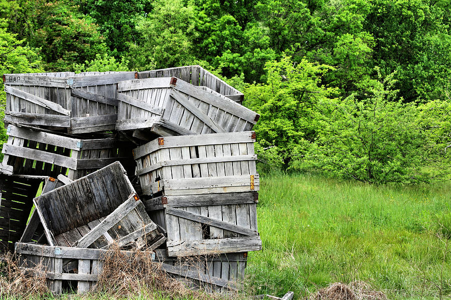 Commercial Agriculture Photograph - Apple Crates by JC Findley
