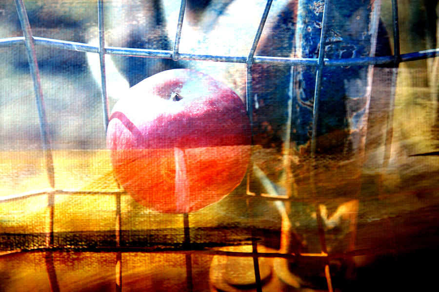Apple Photograph - Apple In A Basket by Toni Hopper