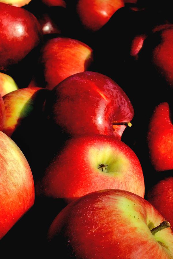 Apples Photograph - Apple Time by Joann Vitali