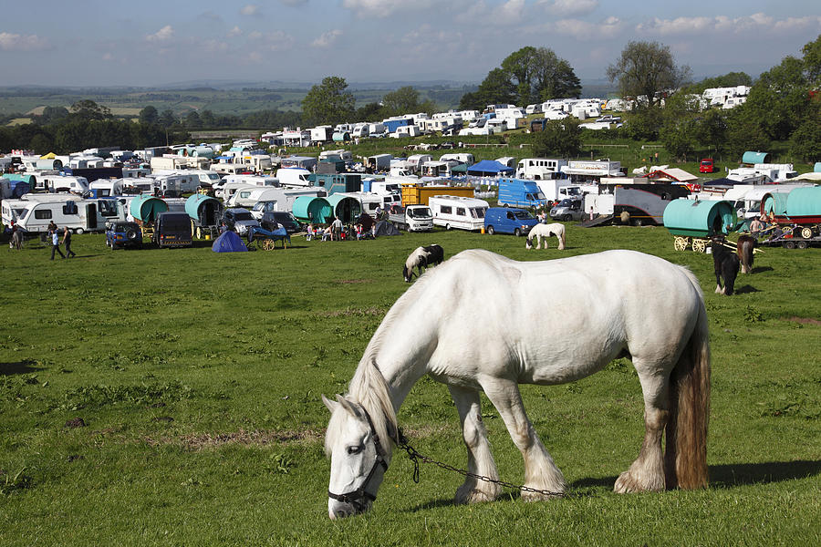 Appleby Horse Fair Photograph - Appleby Horse Fair by Mark Richardson