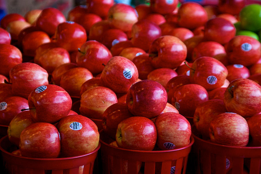 Canada Photograph - Apples by Mike Horvath