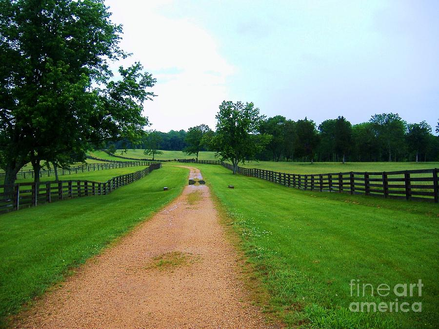 Appomattox Photograph - Appomattox Now Lies Silent by Donna Parlow