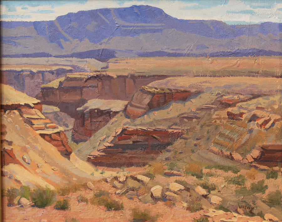 Approaching Grand Canyon by Morris Reese