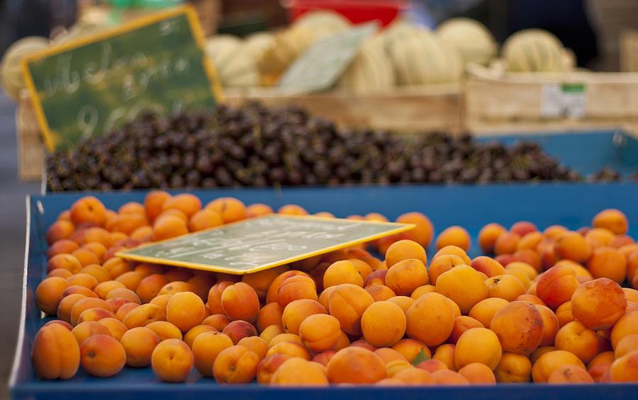Apricot Photograph - Apricot Season by Georgia Fowler
