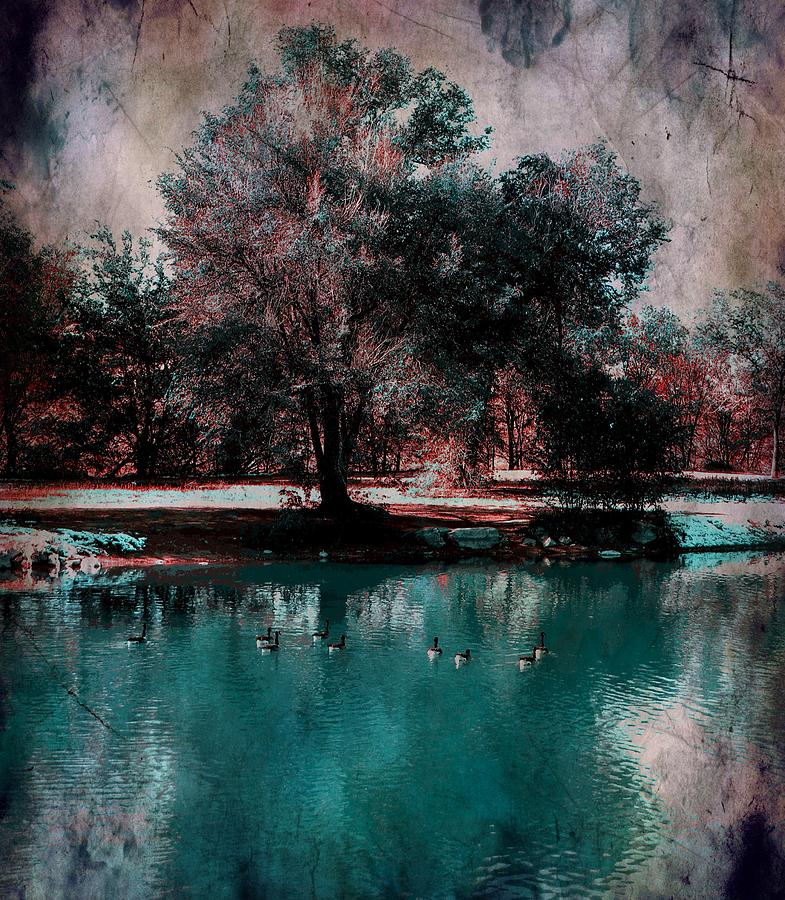 Pond Photograph - Aqua Pond by Michelle Frizzell-Thompson