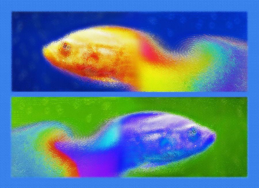 Fish Photograph - Aquarium Art Diptych 2 by Steve Ohlsen