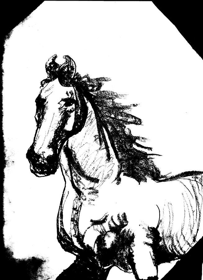 Arabian Run Drawing by Crystal Henderson