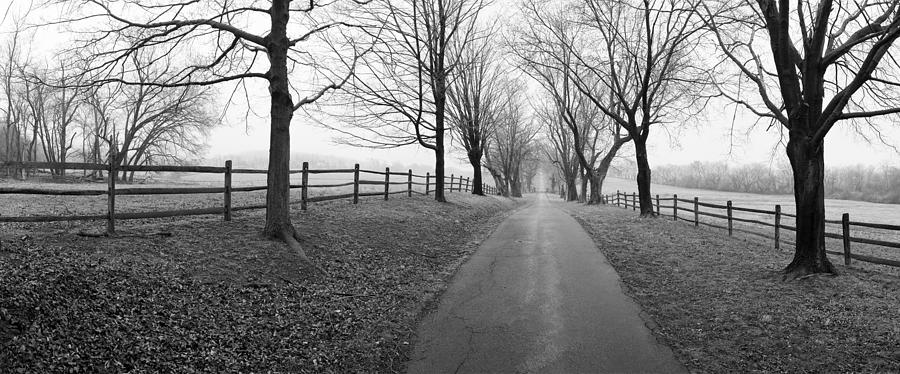 Farm Photograph - Araby Farm Lane by Jan W Faul