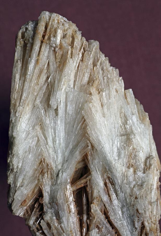 Aragonite Photograph - Aragonite Crystals by Dirk Wiersma