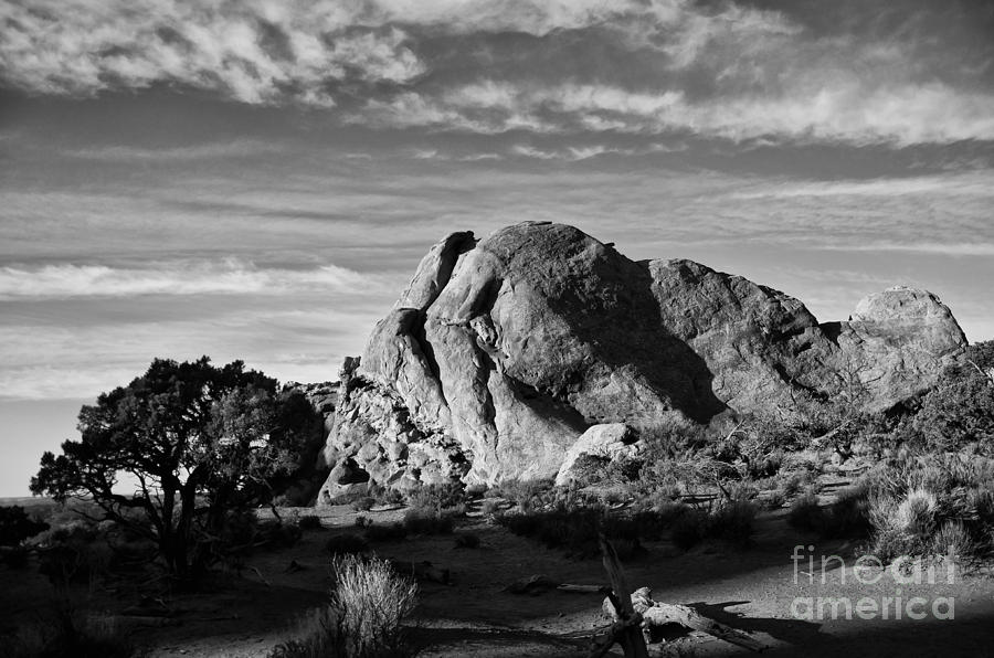 Arches National Park Photograph - Arches Black And White by Wilma  Birdwell