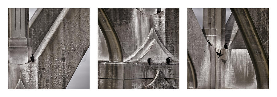 Architecture Photograph - Architectural Detail Triptych by Carol Leigh