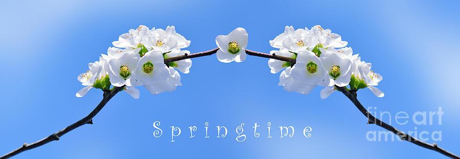 Springtime Photograph - Archway To Springtime by Kaye Menner
