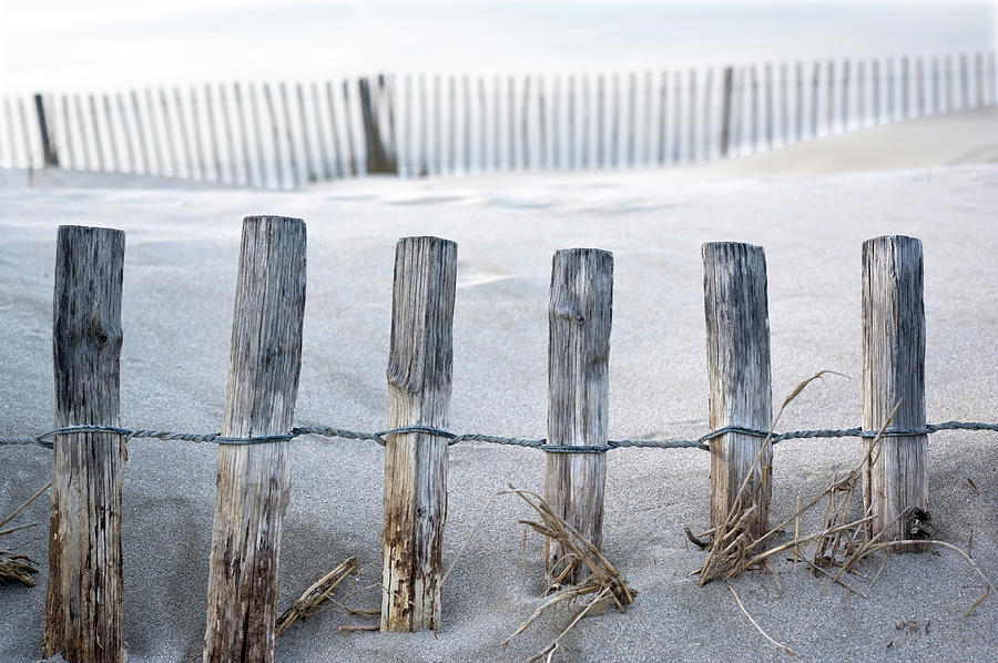 Horizontal Photograph - Aresquiers Beach by Anne Petitfils