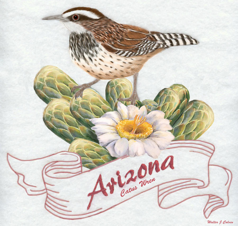 arizona state bird digital art arizona state bird cactus wren by walter colvin