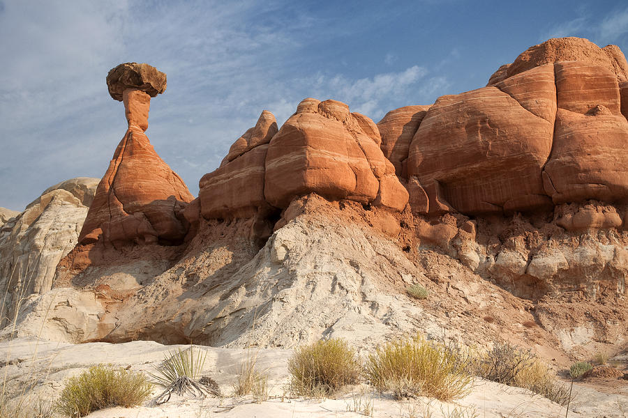 Arizona Toadstool Hoodoos by Mike Irwin