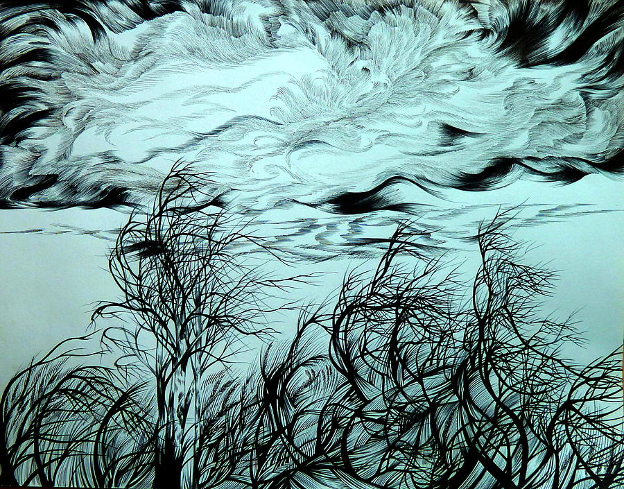 Pen And Ink Drawing - Arrival Of Chinook by Anna  Duyunova