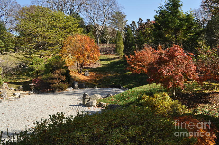 Cheekwood Gardens Photograph - Art In The Gardens by Denise Ellis