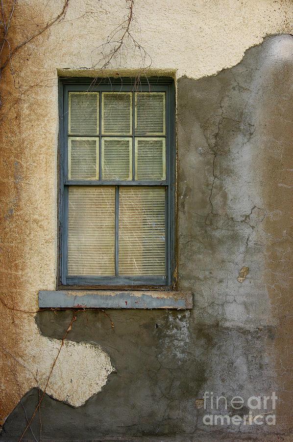 Photograph Photograph - Art Of Decay by Vicki Pelham