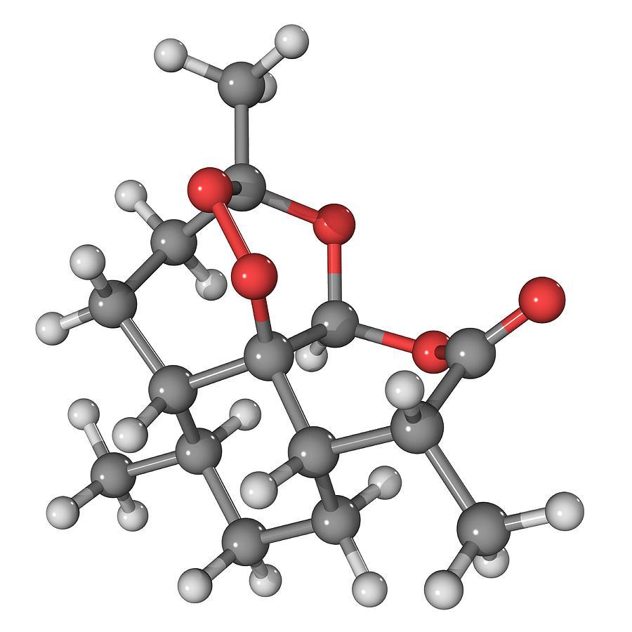Molecular Photograph - Artemisinin Malaria Drug Molecule by Laguna Design